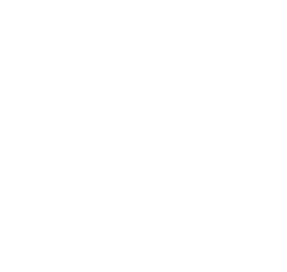 The Future Is Back Home